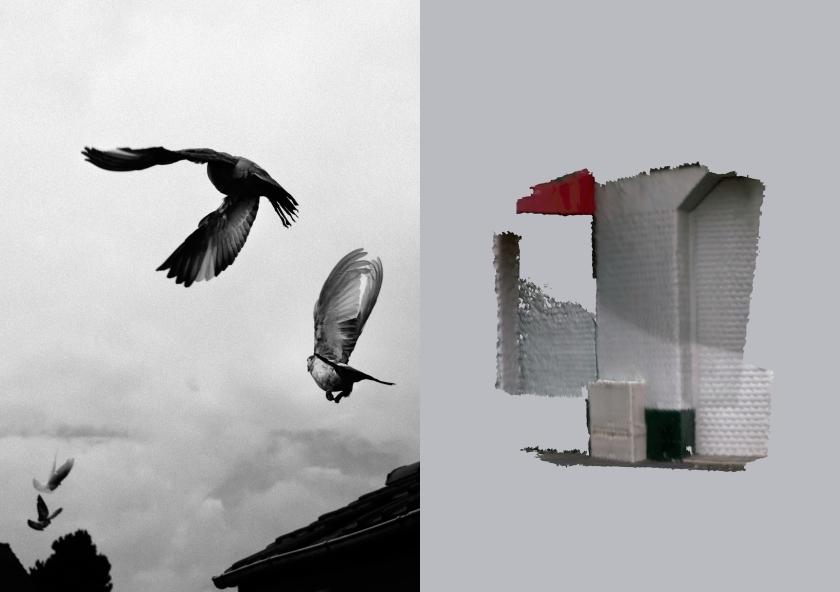 Les immobiles © Léa Habourdin et Thibault Brunet, Carte blanche PMU (2014)